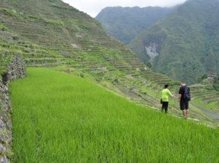 Trekking información en nuestra guía Banaue