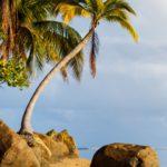 Playas de Puerto Princesa