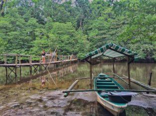 Visita Manglares Puerto Princesa Sabang