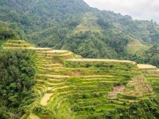 Guía de los arrozales de Banaue