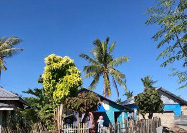 Casa locales de la isla de Malapascua