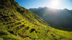 Clima en Filipinas ¿Cuál es la mejor época para ver los arrozales de Banaue??