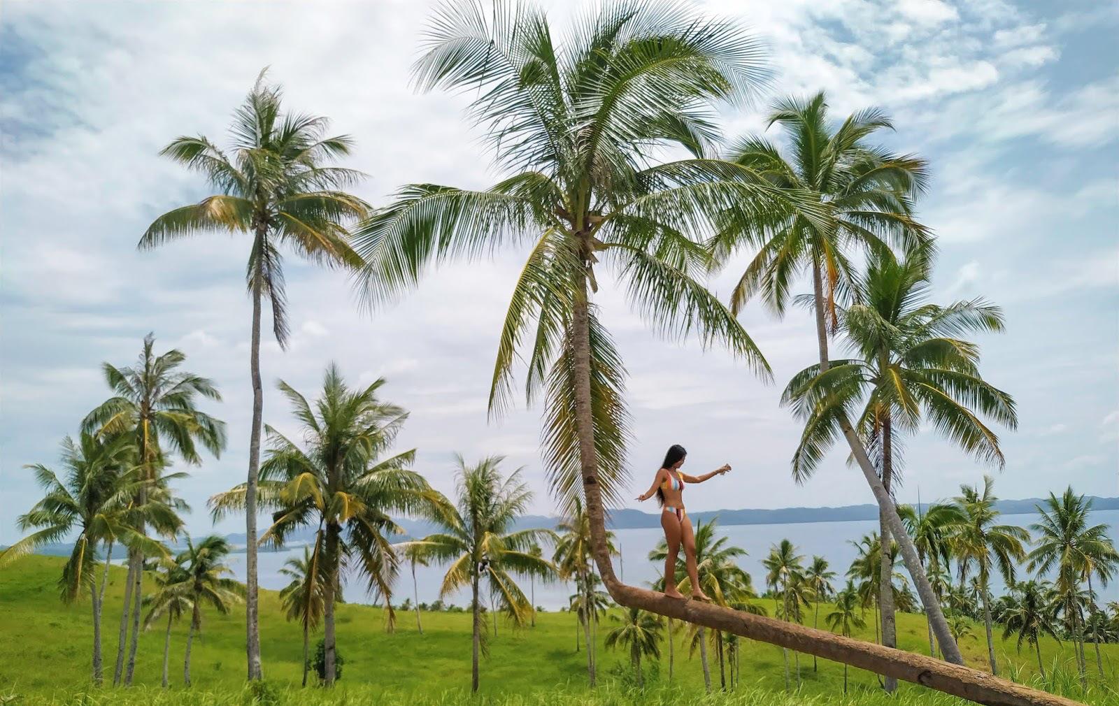 Informacion viajar Filipinas
